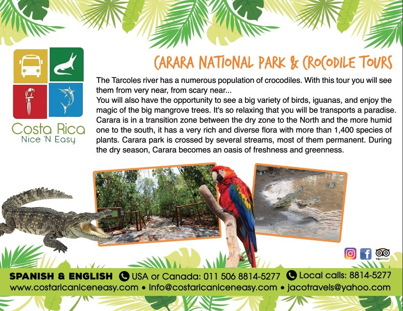Carara National park & Crocodile tours
